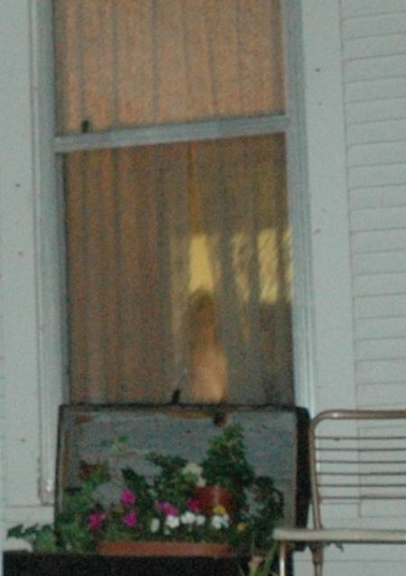 ghost103108c