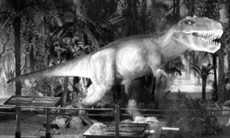 Real Dinosaurs Alive